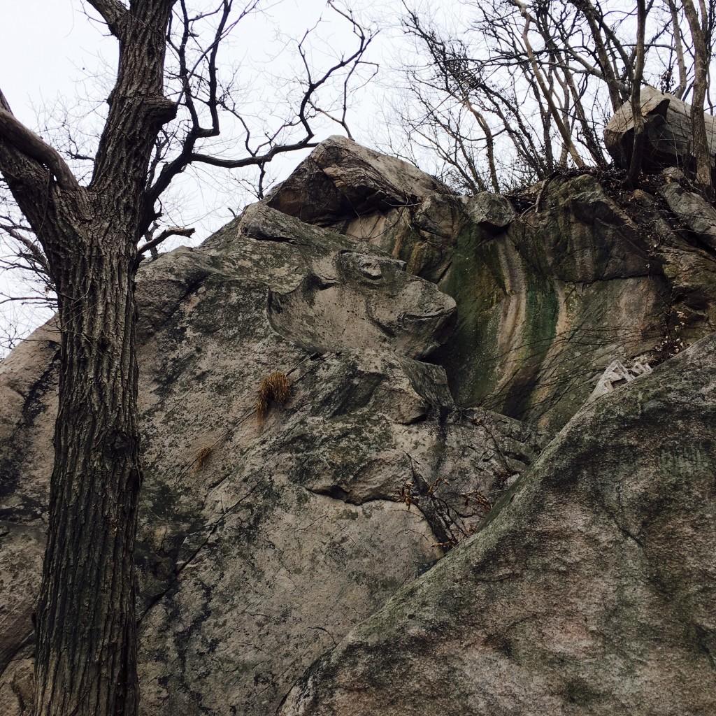 像猴子脸的石头