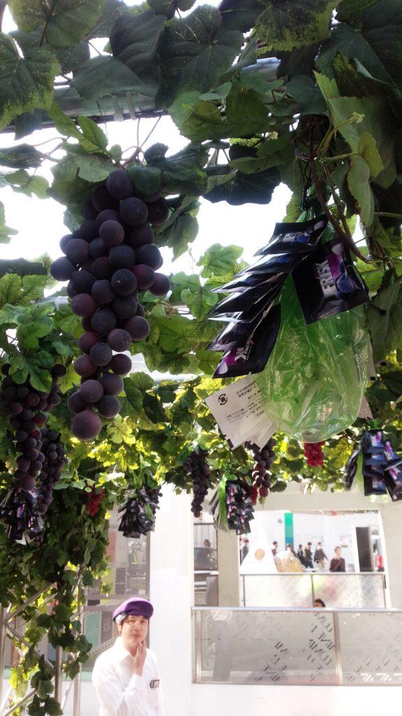由于这次推销的新口味是葡萄味,所以这里的样品都是黏在根上面模仿葡萄