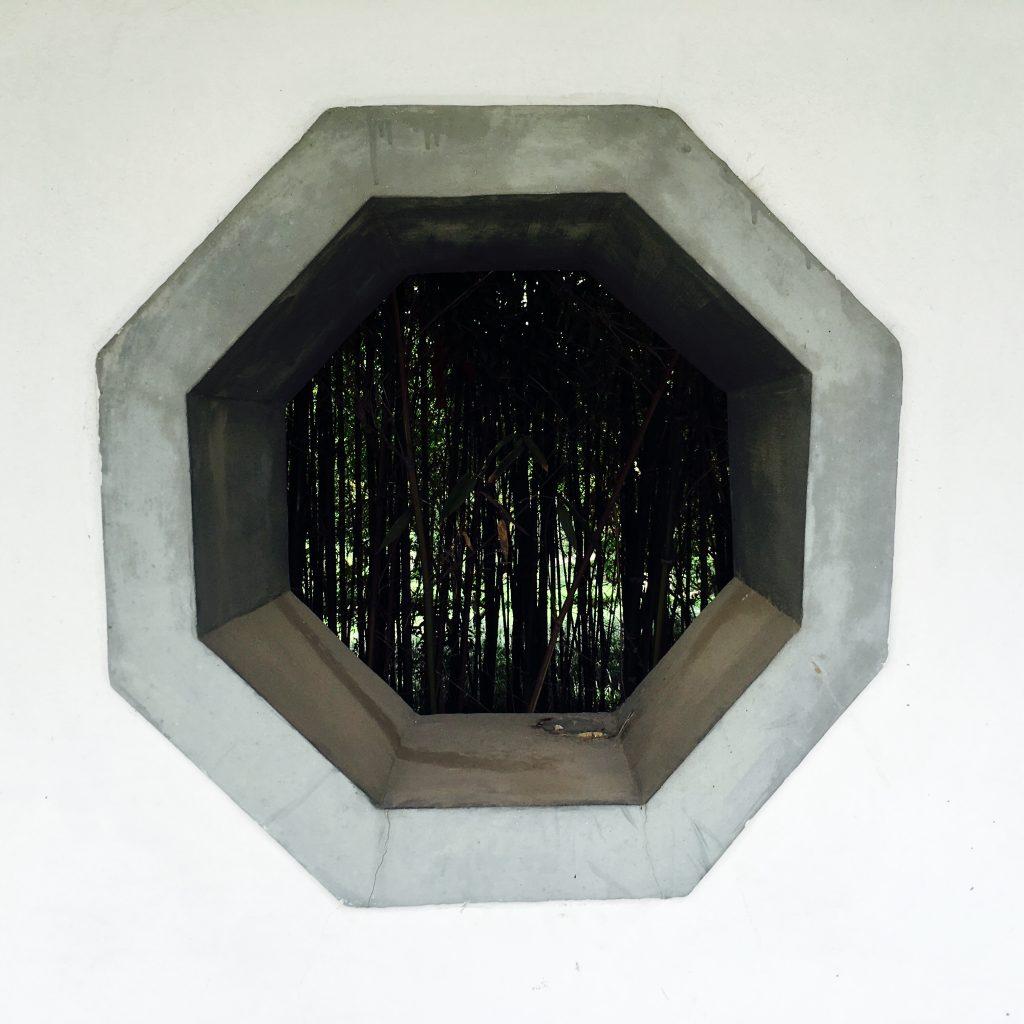 王羲之故居的竹林