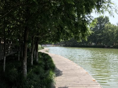 iPhone 7 Plus样张