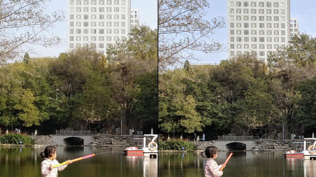 坚果Pro 2与Pixel拍照画面细节对比